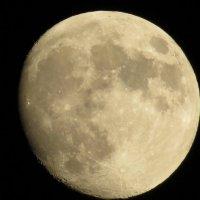 Луна :: Игорь Мукалов