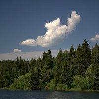Фигурное облако :: Роман Яшкин