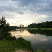 Вид на башни из Измайловского парка :: Роман Аникин