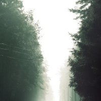 туман 1 :: Дмитрий Виноградов