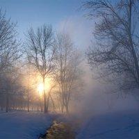 Зимнее утро :: Максим Судаков