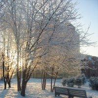 Зимний закат :: Анна Вдовкина