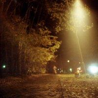 Вечерняя дорожка :: Андрей Еремеев