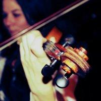 Скрипка :: Валерий Афанасьев