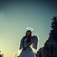 Ангел :: алексей афанасьев