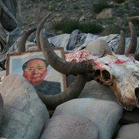 Кто из них Мао :: Александр Другов