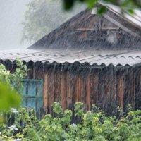Дождь :: Ульяна Сафронова