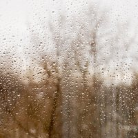 18 декабря, воскресенье, утро, дождь... :: Артем Шлычков