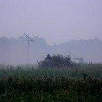 Туман :: Виктория Минаева