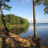 Река Волга.Тверская облость :: Елена Горбова