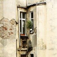 Window :: Алексей Чмыхалов