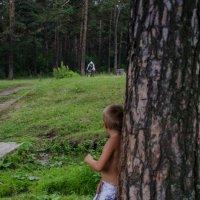 Мальчик наблюдает :: Роман Яшкин