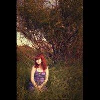 Summer :: Ann Freyd