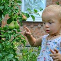 Детские!! :: Андрей Кох