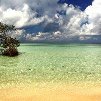 Невероятная Индонезия :: Eva Langue