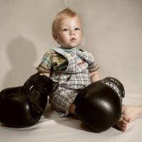 Маленький боксер :: Антон Никифоров