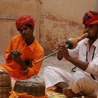 Индия :: Александр Другов