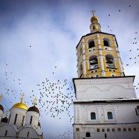 Пафнутьев-Боровский мужской монастырь :: Виталий Ахмедьянов