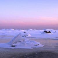 Вечер на Финском заливе :: Максим Судаков