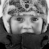 Морозно :: Николай Смоляк