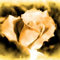 Просто красиво :: Натали V