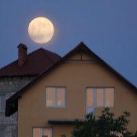 Moon :: natalia nataria