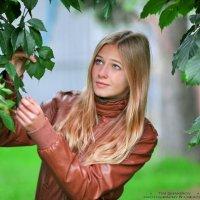 алиса :: Тимур Шакиров