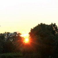 Sun :: Мария Полосина