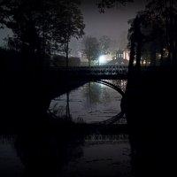 ...только ночь :: Сергей Долженко