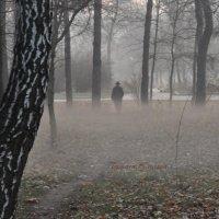 Туман :: Тамара Крутова