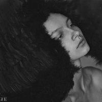 wings :: Александр Афанасьев