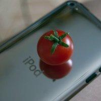 iPod tomato :: Маша Путина