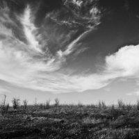 Буря :: Anton Yatsenyuk