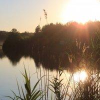 Lake :: natalia nataria