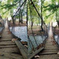Старый мост - до и после рекомендаций :: Дарья Хубанова