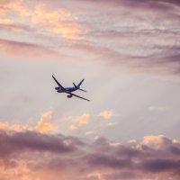 Кто-то летит домой... :: Виталий Ахмедьянов