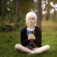 the forest :: Natalia Dikova