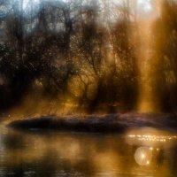 Осенне-солнечное :: Андрей Селиванов