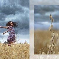 Погода :: Катерина Кузнецова