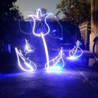 LightFlower :: Сергей Петренко
