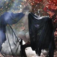 Fairy bird :: Татьяна Ачелова