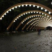 световая арка :: Sergey Ganja