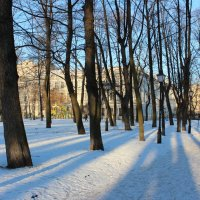 Весеннее утро ... :: ирина )))