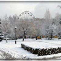 Уснувший парк :: Михаил Петрик