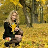 Осень :: Юрий Никитин