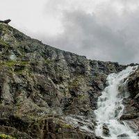 Norway 166 :: Arturs Ancans