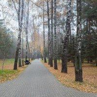В парке.... :: Александр Манько