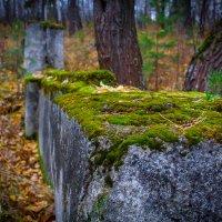 Старый фундамент... :: игорь козельцев