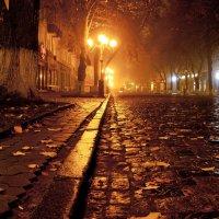 После дождя :: Денис Ведь