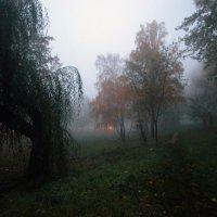 Октябрь2 :: Александр Бодягин